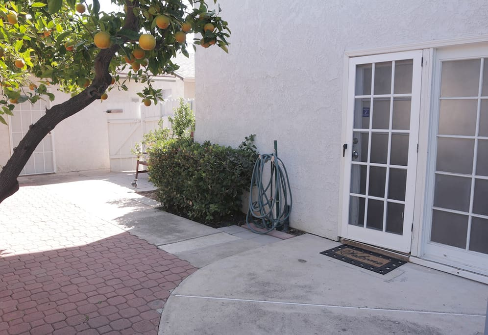 Private Entrance to your private master bedroom! There is an organic orange tree right in front-you may certainly grab as much of these delicious oranges as you please.