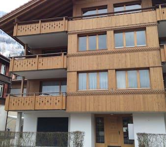 Аппартаменты в центре Швейцарии - Iseltwald - Apartmen