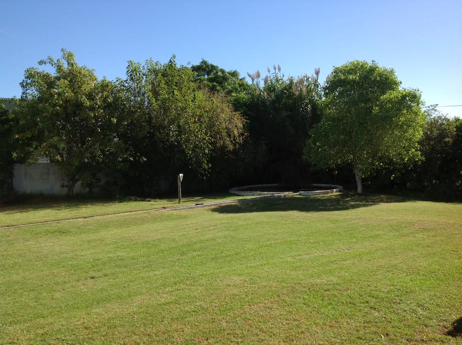 Large garden ideal for a game of cricket