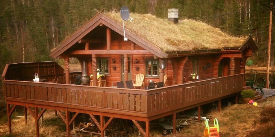 Flott laftet hytte ved fiskevann/badevann, båt