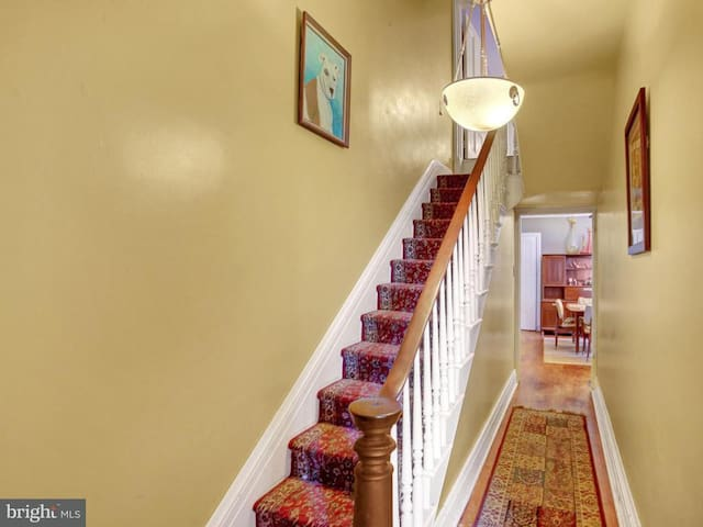 The stairway to your urban oasis!