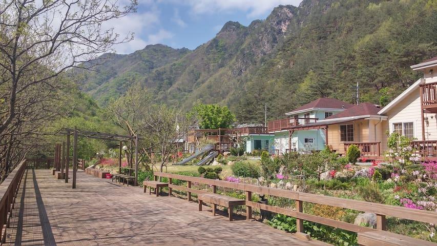 농장,생태체험이 가능한 한실 - Gimsatgat-myeon, Yeongweol - House