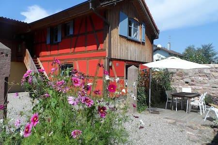 Gîte 3-5 personnes Blodelsheim