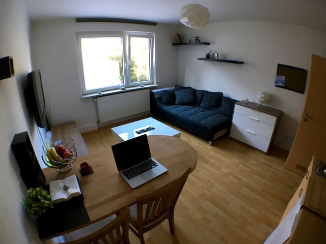 Helles 2 Zimmer Apartment, zentral in Wuppertal - Wuppertal