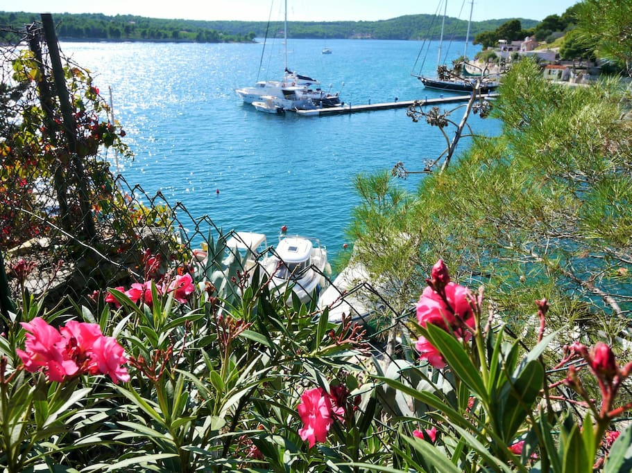 Watch the Sail Boats Pass Nearby From the Garden