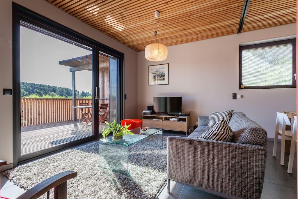 Le salon et la terrasse