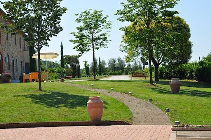 Outdoor: garden