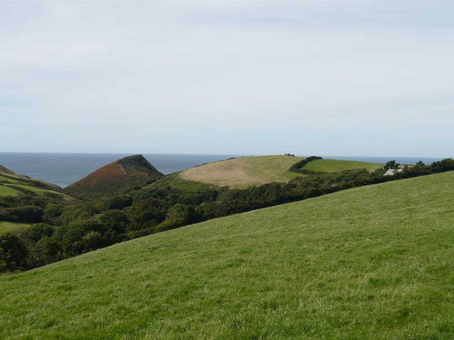 Remote and Peaceful, nestled among hedgerows fields and clifftops - just to the right there above  - is Cleave Farm and The Barn!