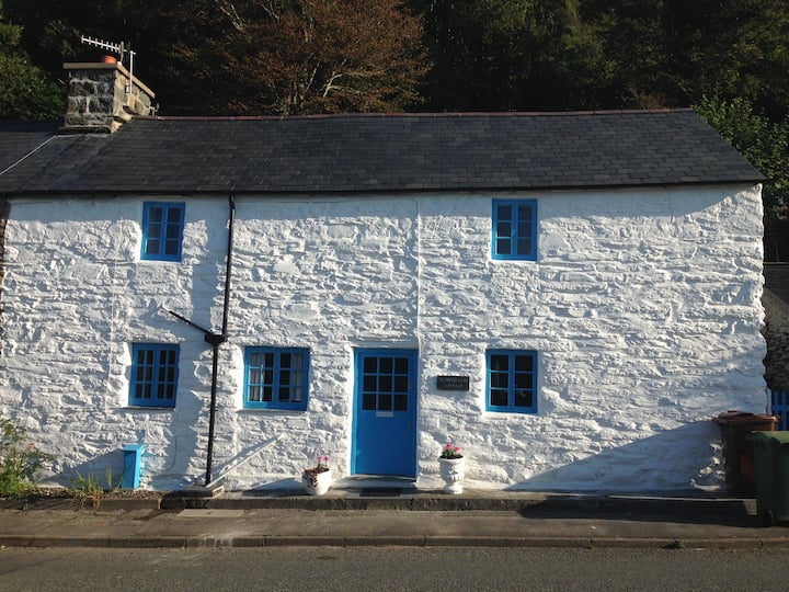 Traditional Snowdonia Welsh Cottage
