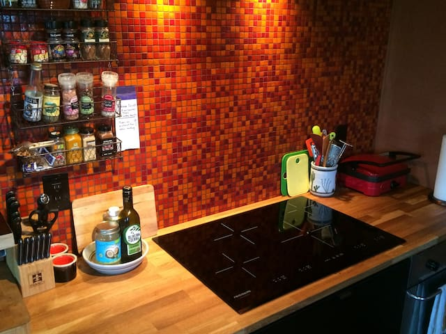Cooks kitchen -- oils, salts, spices all stocked for your use. 4-burner electric induction cooktop. Tile by MODWALLS.
