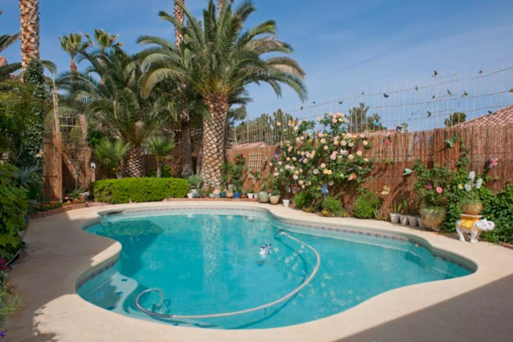Immaculate private pool & outdoor garden shower.