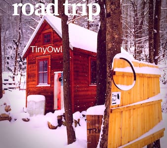 Tiny Owl - Newport - Cabanya