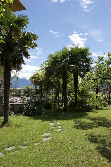 mediterraner Garten ...