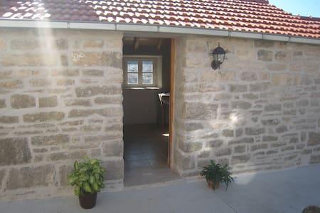 Apartment Gabrijel - Žrnovo - Lejlighed