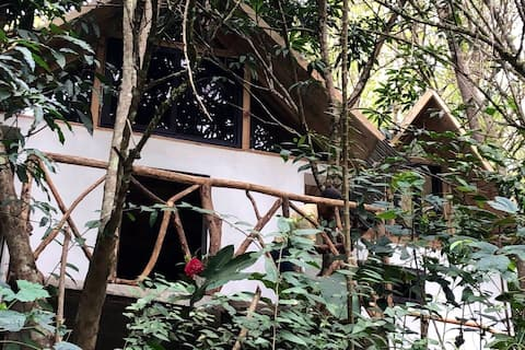 Private Cabin Surrounded by Jungle
