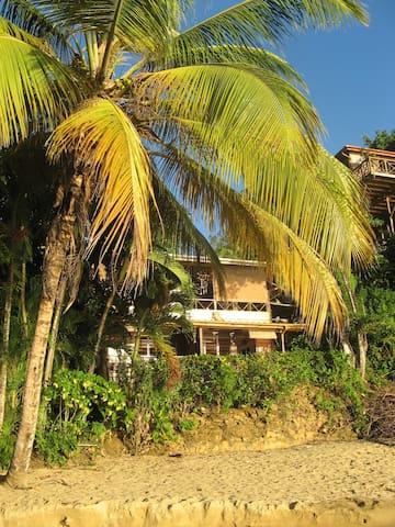 Coconut Heights