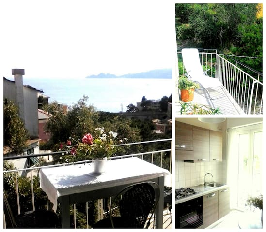 Liguria, Portofino view - five min walk from beach