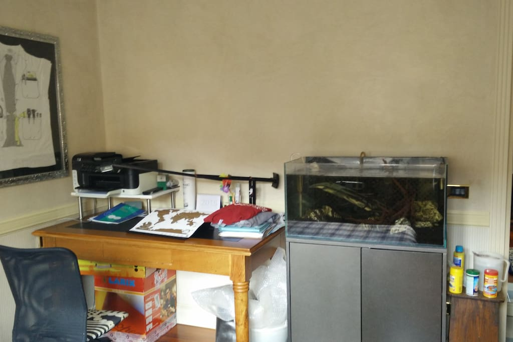 The desk and the fish tank