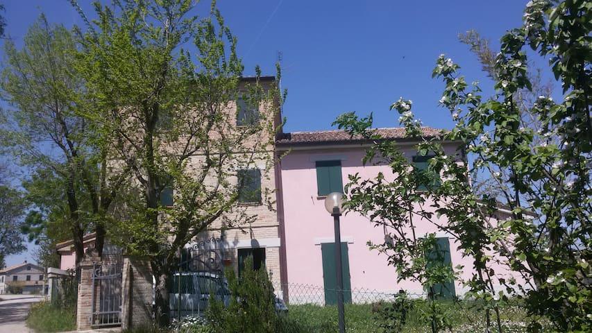 RELAX IN CAMPAGNA A 15 KM DAL MARE - Morro D'alba - House