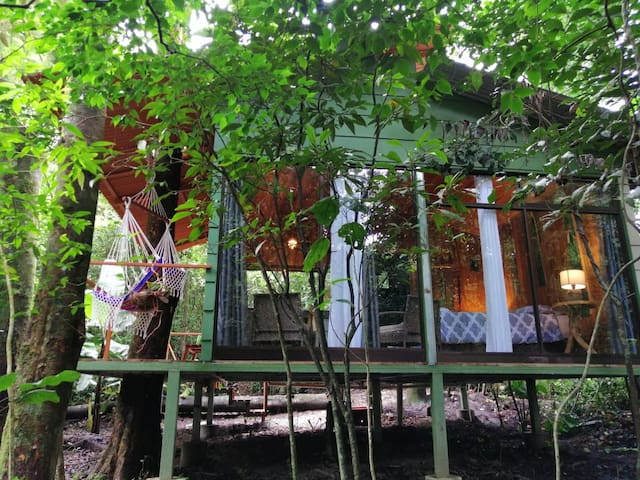 Jungle Living Tree House Aguacatillo