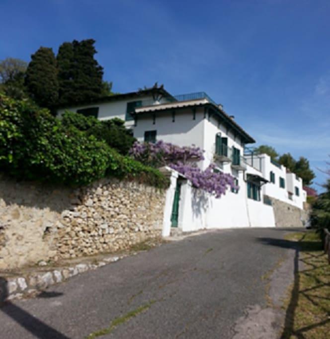 ingresso glicine/ wisteria entrance