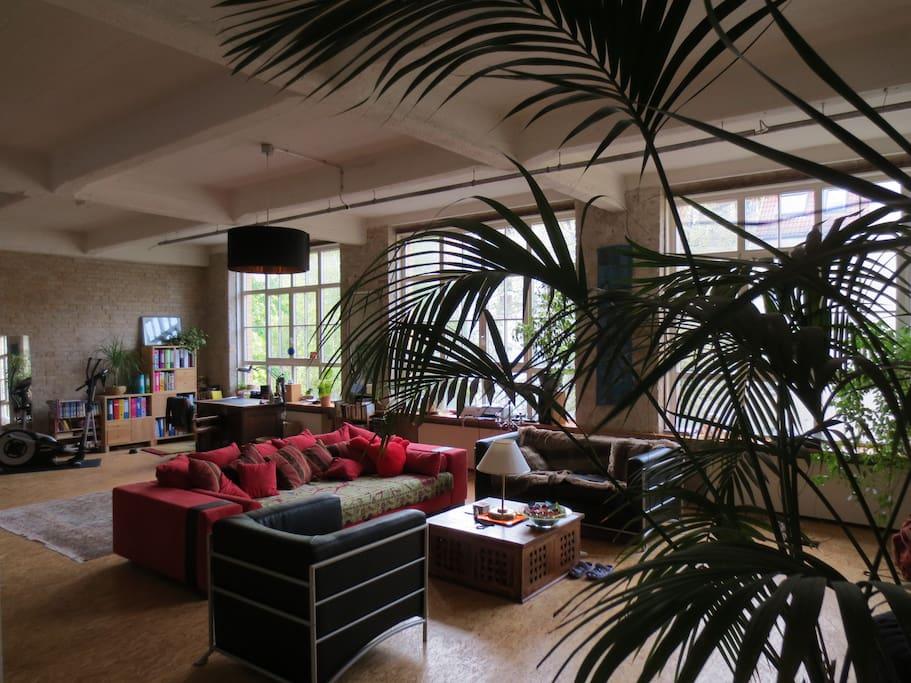 main living room!