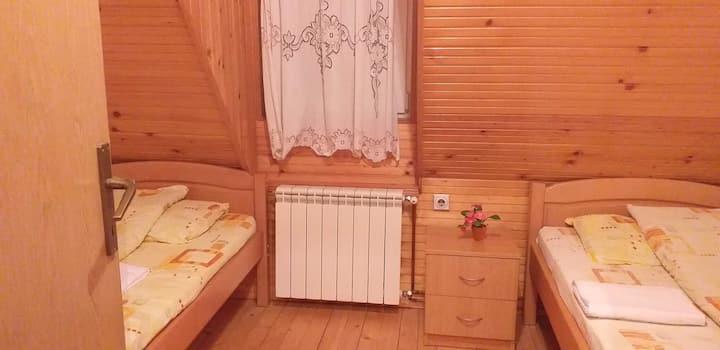 Karadzic Room 2