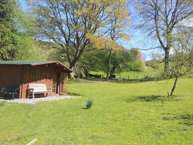 The Cabin - Winscombe - Cabin