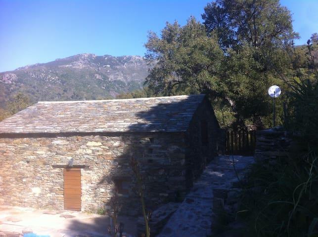 Vieille maison en pierre - Volpajola - House