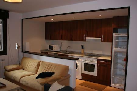 Agradable apto en el centro - Benasque - Appartamento