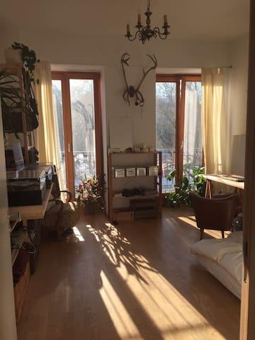 Sunny 19m² room in nice bright flat - Berlin - Apartment