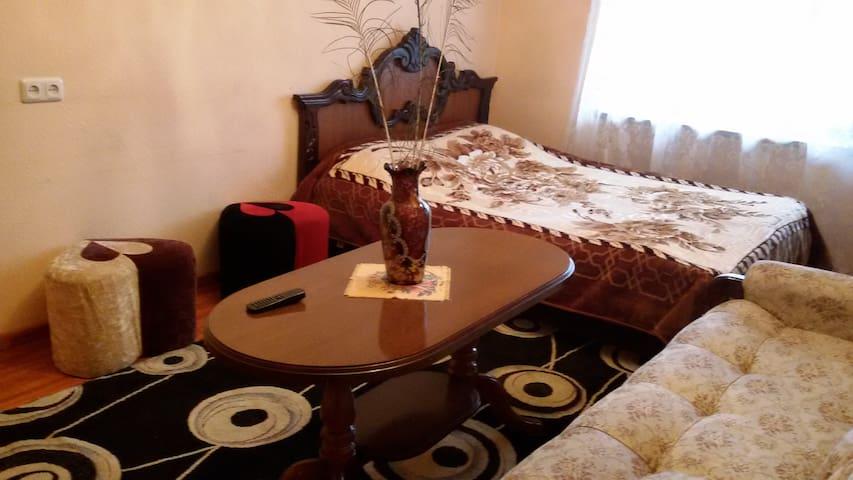 Сдается квартира посуточно - 예레반(Yerevan) - 단독주택