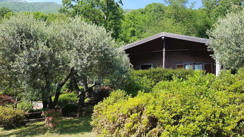 Cottage degli ulivi - Mergozzo - Bracchio