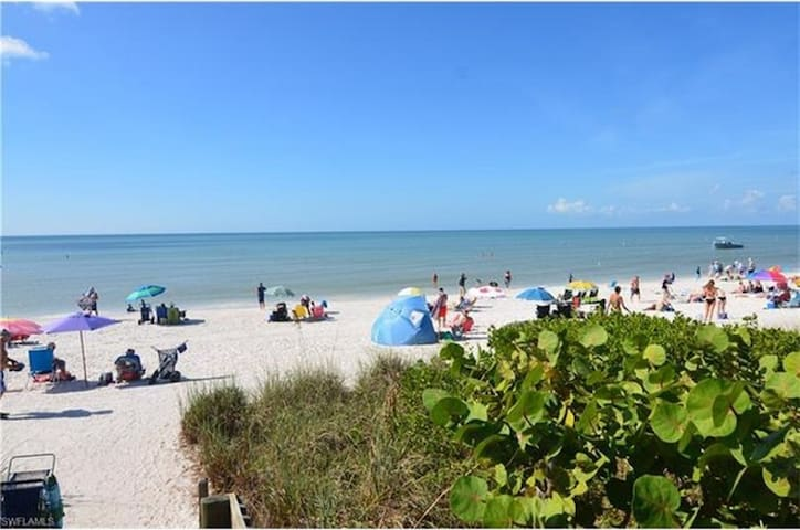 Barefoot Beach Near Naples Voted #2 Beach in US - Bonita Springs - Kondominium