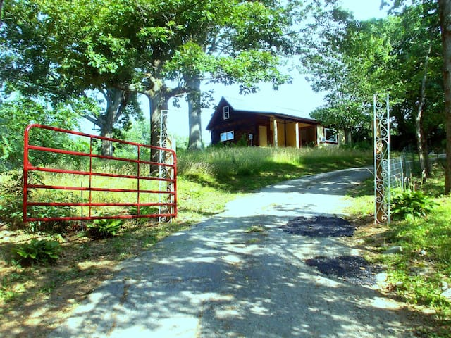 Country Peacefulness near Town - Asheville - Apartment