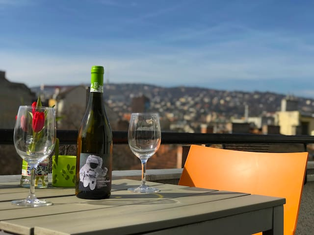 Penthouse with an amazing view next to Buda Castle
