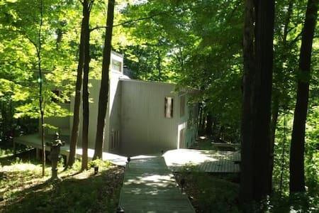 Seneca Lake Woodland Retreat  Heart of Wine Trail! - Penn Yan - Haus