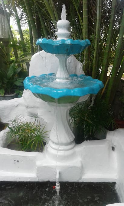 Fountain with talapia