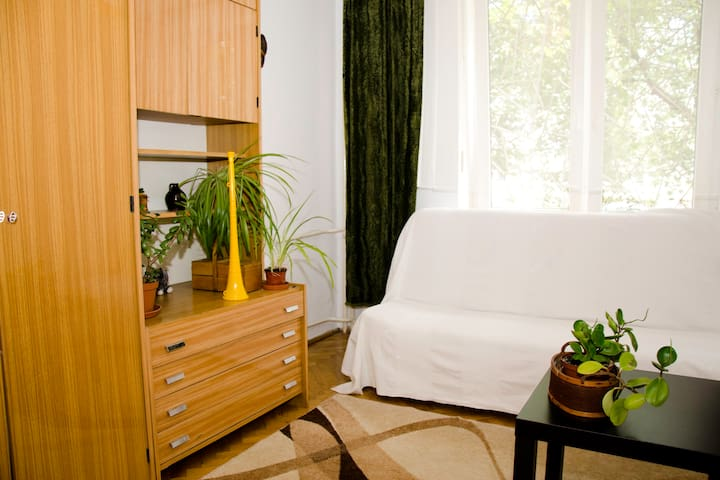 Small room near Lazienki Parc - Varšava - Byt