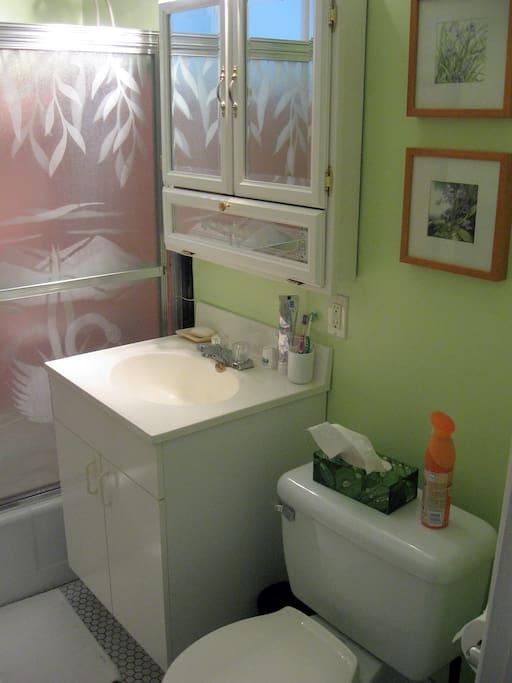 Très propre avec puit de lumière. Douche et bain.