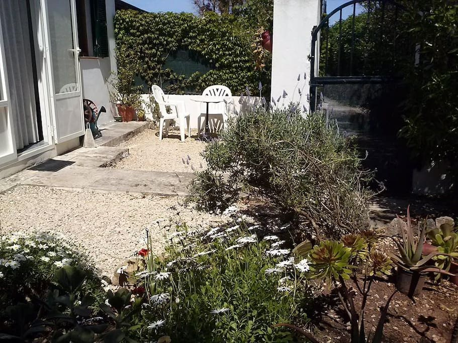Habitacion con jardin apartamentos en alquiler en for Alquiler bajo con jardin madrid