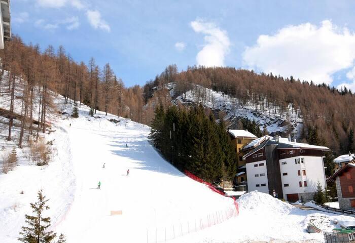 Appartamento Ovovia Larici, sulle piste da sci