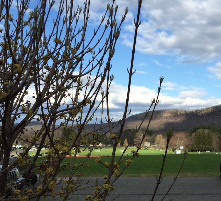 Running track and tennis courts in backyard, plus great view of the Holyoke Range.