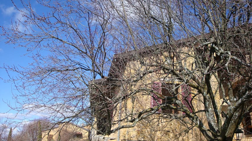 Belle maison en pierres dorées - Le Bois-d'Oingt