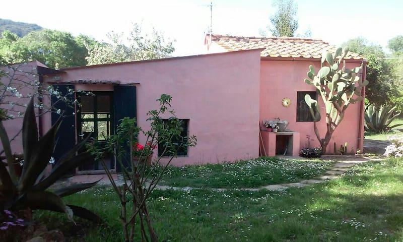 Deliziosa casetta singola Procchio - Colle di Procchio - Huis