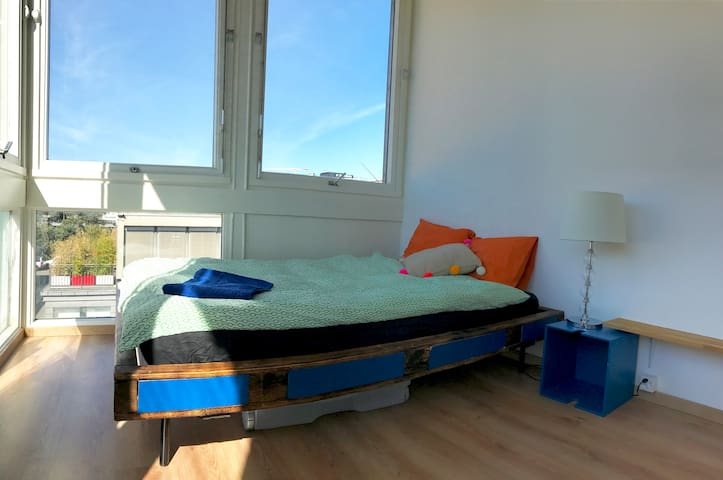 Bright and spacious room in vibrant area - Carouge - Auberge de jeunesse