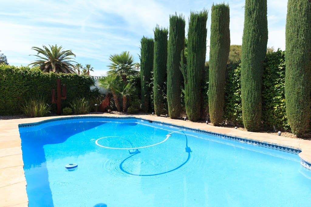 Epic solar heated Jacuzzi + swimming pool!