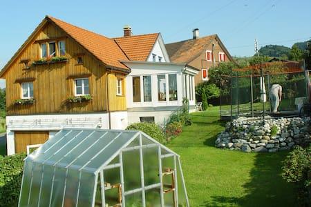 Grosses Zimmer mit Bodensee-Sicht - Heiden - Rumah