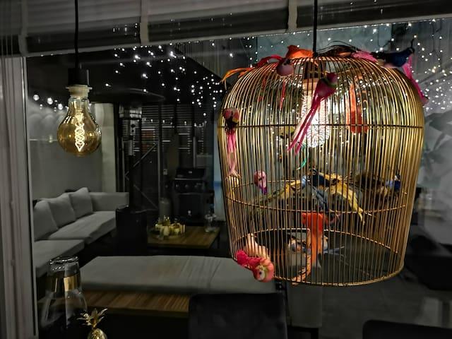 Design Lamp:p