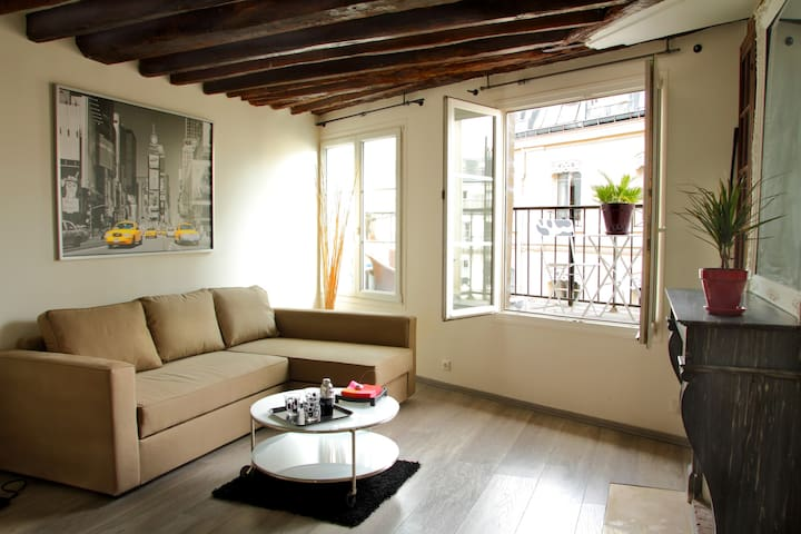 Apartment, Paris center, Marais